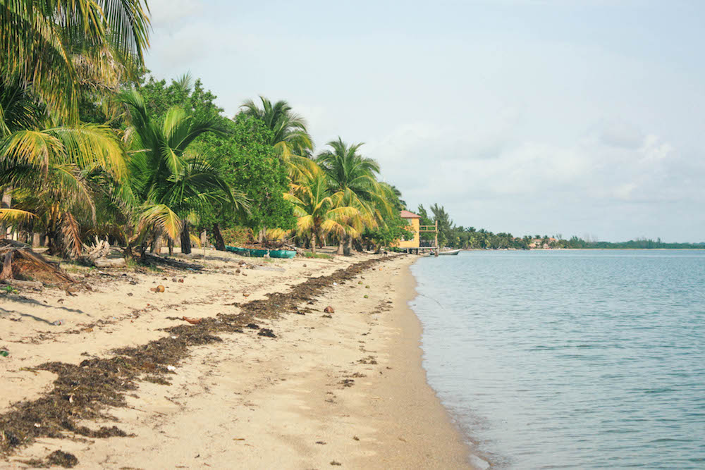 What to do in Hopkins Village, Belize: Visiting Hopkins Beach